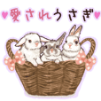Beloved Rabbit stamp 3