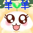 Name Sheep use face