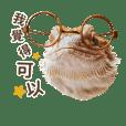 Yu hsiang yun_20181017203154