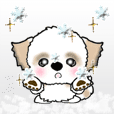 Shih Tzu dog (winter ver.) vol.19