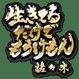 KINGON SASAKI no.14