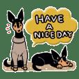 Every Day Dog Miniature Pinscher