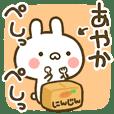 Cute Rabbit[Ayaka]