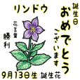 September,birth flowers,flower language