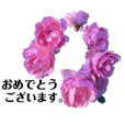 yasu1103 ROSE greeting