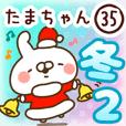 【たまちゃん】専用35<冬/クリスマス/正月2