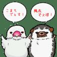java sparrow&hedgehog sticker