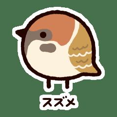 japanese small bird