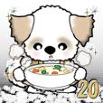 お母さんシーズー犬(冬) Vol.20