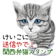 Keiko Kansaiben soushin cat