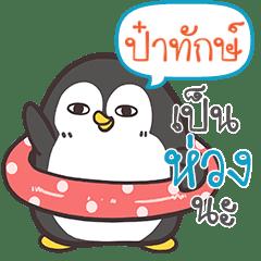 PATUK Funny penguin
