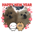Pomeranian Leo and max14 NewYear sticker