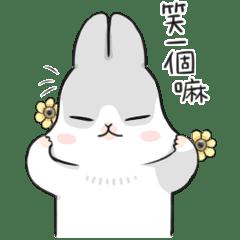 ㄇㄚˊ幾兔(動幾來2)