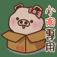 YU豬姓名-小陶專用