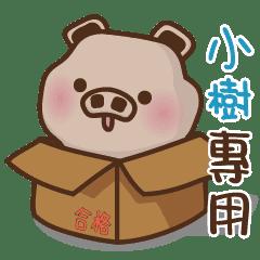 YU豬姓名-小樹專用