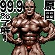 原田専用 筋肉マッチョマッスルスタンプ