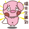 Coco Pig -Name stickers - Mr.Yang