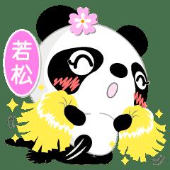 若松専用 Missパンダ [ver.1]