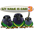 parrot name is Gabi&three birds 3