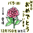 December, birth flowers,flower language.