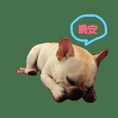 JI-YA_20181119201426