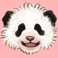 real panda baby