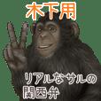 Kinoshita Monkey's real myouji