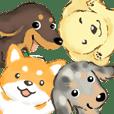 敬語犬2 柴犬 ダックス ダップル