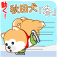動く!秋田犬「冬」