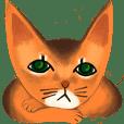 Abi cat (New)