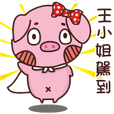 Coco Pig -Name stickers - Miss King