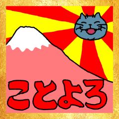 New year! so cute fat cat