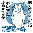 trendy rabbit keigo Winter