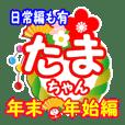 【たまちゃん】お正月&クリスマス&日常編