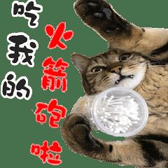 Tazukiの毎日のルーチン
