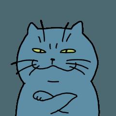so cute fat cat