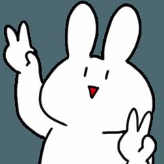 Serious face rabbit