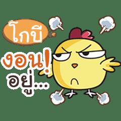 GOBI this chicken?