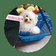 Xuanxuan_20181209163912