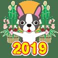 NEW YEAR 2019〜ボストンテリアと車