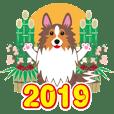 NEW YEAR 2019〜シェルティと車