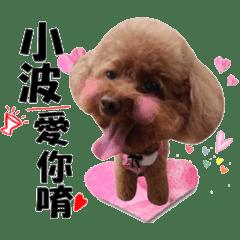 小波日記-禮貌篇