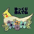 kikiの小鳥スタンプ•イラスト編