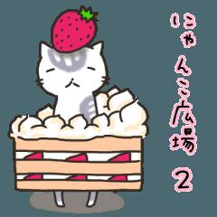 Cat's Square2