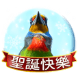 Wild bird friend-Merry Xmas & new year
