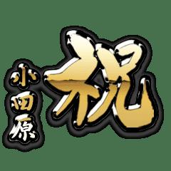 小田原の金の祝い