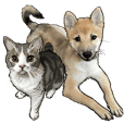 NUNOKAWA DOGS&CATS HOSPITAL:2