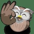貓頭鷹的日常生活 2