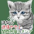 はなに送信やで!関西弁猫スタンプ