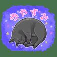鍵しっぽのクロ猫